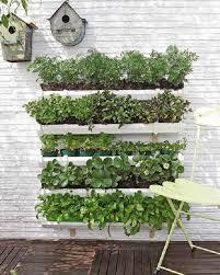 Small Herb Garden Ideas Vertical Herb Garden Insteading