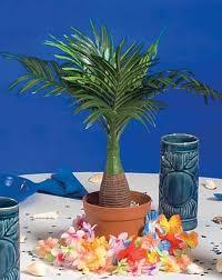 tree centerpiece potted palm tree centerpiece shindigz