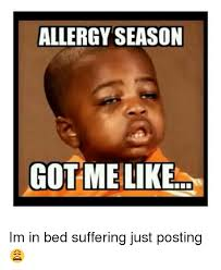 allergy season got me like im in bed suffering just posting