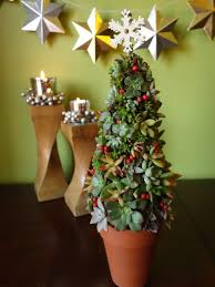 create a living succulent christmas tree tutorial ehow