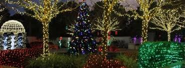 largo central park christmas lights christmas st petersburg clearwater 2017 guide to holiday events