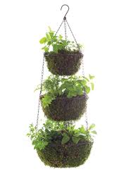 three tier hanging herb planter garden therapy