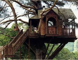 Amazing Tree Houses  Ideas Top 10 Tree Houses Chimney Amazing