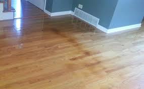 Fix Laminate Floor Waverly Wood Flooringbuckled Hardwood Floors Fix Warped Laminate