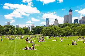 public places in nyc with strong air conditioning