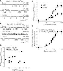 cerebrovascular dilation via selective targeting of the cholane