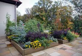 container gardening u2013 how do you pick your planters