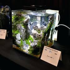 membuat aquascape bening nano aquascapes cube nature aquarium by appartment nano reef