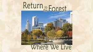 return to the forest where we live lpb