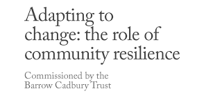adapting to change the role of community resilience the young