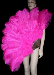ostrich feather fans prime quality ostrich feather headdresses feather fantail