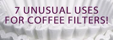 Coffee Filter Uses | 7 unusual uses for coffee filters clean my space