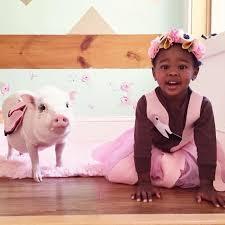 Kids Pig Halloween Costume Kids Pets Matched Costumes Halloween Junk Host