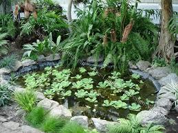 Small Pond Landscape - Backyard pond designs small