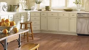 Laminate Flooring For Kitchens Carpeted Flooring Installation Sears Home Services