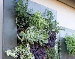 Decorative Indoor Planters Indoor Planters Etsy