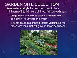 planning and preparing a vegetable garden site ppt video online