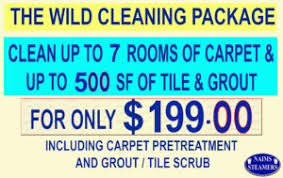 Area Rug Cleaning Prices Chandler Carpet Cleaning Clean Up To 7 Rooms For 77 00 No Gimmick