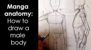 How To Draw Female Anatomy Manga Anatomy How To Draw Male Body Full Lesson Youtube