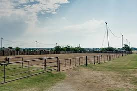 Outdoor Arena Lights by Horse Property Second Shelters