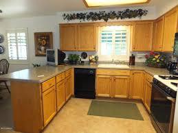 kitchen cabinet ideas on a budget budget kitchen cabinets petersonfs me