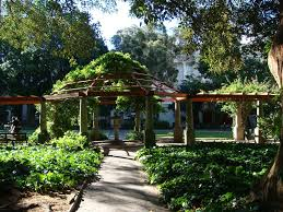 Botanical Garden Pictures by Cape Town U0027s Most Beautiful Parks And Gardens