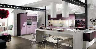 purple kitchen ideas kitchen designs kitchen purple accents green and purple kitchen