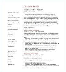 exle basic resume software architect resume sle ceciliaekici