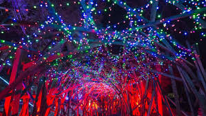 when do the zoo lights end holiday things to do in southern california christmas lights