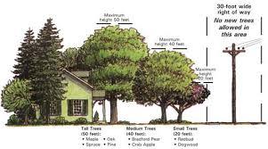 landscaping standards