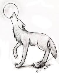 wolf sketch by kawaii kimono on deviantart