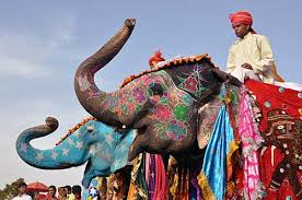 jaipur elephant festival coffee table magnificent hotels in jaipur hottest deal on hotels in jaipur