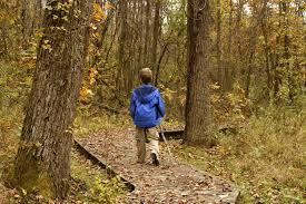 view fall foliage in northeast ohio