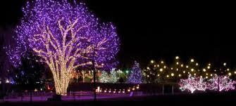 hudson gardens christmas lights hudson gardens and event center real colorado travel