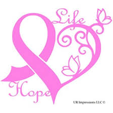amazon com pink awareness ribbon butterfly fancy window decal