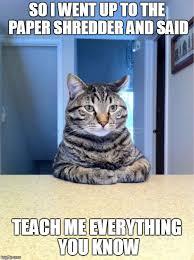 Shredding Meme - take a seat cat meme imgflip