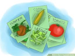 3 ways to start a vegetable garden wikihow