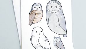 snowy owl and northern lights illustration 100 owls