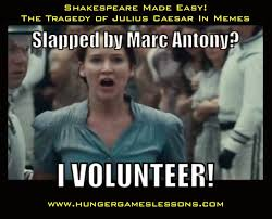 Shakespeare Meme - hunger games lessons shakespeare made easy and fun