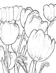 beautiful scenery coloring pages