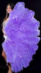 large feather fans prime quality ostrich feathers fans