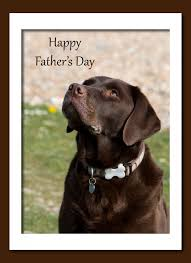 father u0027s day dog card free stock photo public domain pictures
