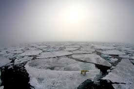 climate change vital signs of the planet arctic winter warming