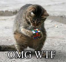 Talking Cat Meme - stuff by cher know your meme