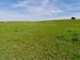 Acreages For Sale Land Listings