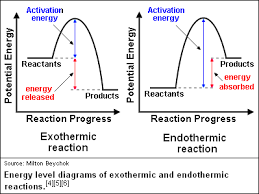 what is difference between endothermic and exothermic reaction