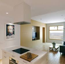 interior modern living room decorating ideas for apartments one