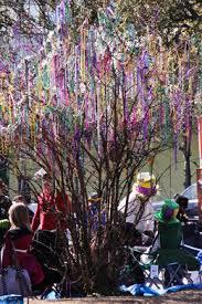 mardi gras trees mardi gras bead tree new orleans louisiana atlas obscura
