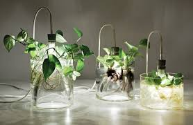 Mad Scientist Light Vegetal Kitchen Table Lamp ID Lights - Kitchen table lamp