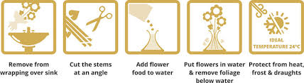 Flowers Direct Flower Care Guide How To Care For Your Flowers Flowersdirect